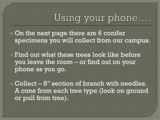 Using your phone….