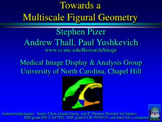 Towards a Multiscale Figural Geometry