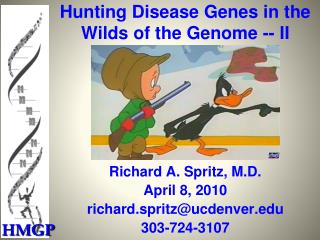 Hunting Disease Genes in the Wilds of the Genome -- II