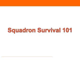 Squadron Survival 101