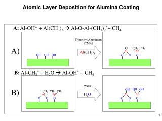 Atomic Layer Deposition for Alumina Coating