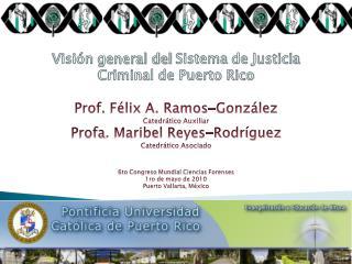 Visión  general del  Sistema  de  Justicia  Criminal de Puerto Rico
