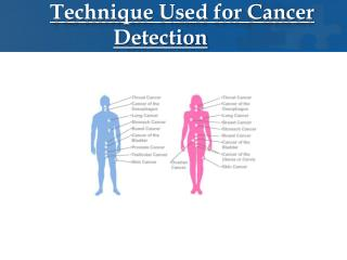 Technique Used for Cancer Detection