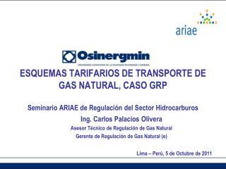 Ing. Carlos Palacios Olivera Asesor Técnico de Regulación de Gas Natural