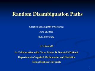 Random Disambiguation Paths