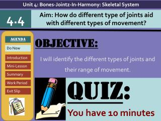 Objective: I will  identify the  different types of joints and their range of movement.
