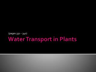Water Transport in Plants