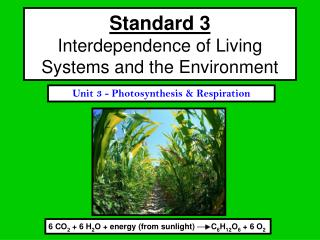 Standard 3 Interdependence of Living Systems and the Environment