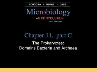Chapter 11,  part C