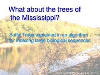 What about the trees of  the Mississippi?