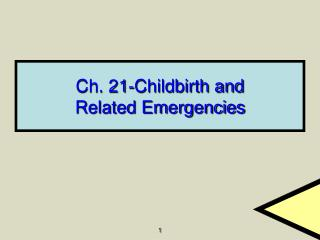 Ch. 21-Childbirth and Related Emergencies