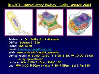 BIO201: Introductory Biology – Cells, Winter 2004