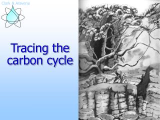 Tracing the carbon cycle