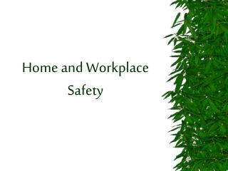 Home and Workplace Safety