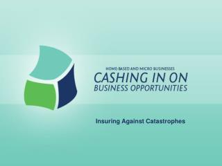 Insuring Against Catastrophes