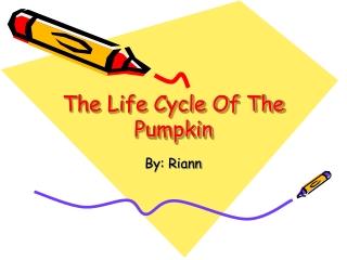 How to Draw a Life-like Pumpkin