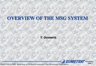 OVERVIEW OF THE MSG SYSTEM
