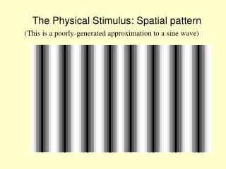 The Physical Stimulus: Spatial pattern