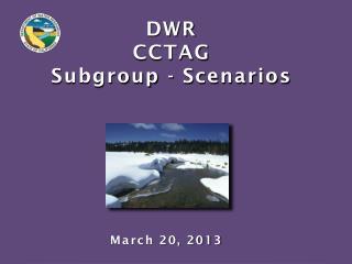 DWR  CCTAG Subgroup - Scenarios
