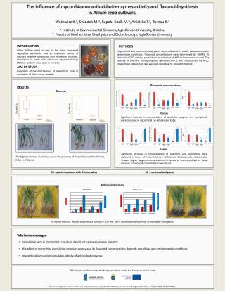 The influence of  mycorrhiza  on  antioxidant enzymes activity  and  flavonoid synthesis
