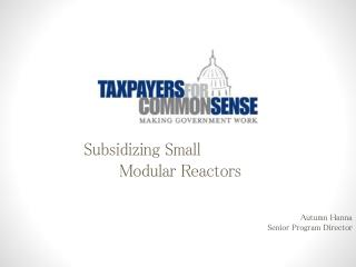 Subsidizing Small  	Modular Reactors