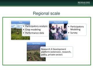 Regional scale