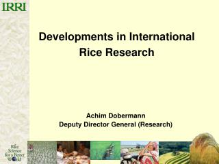 Developments in International Rice Research