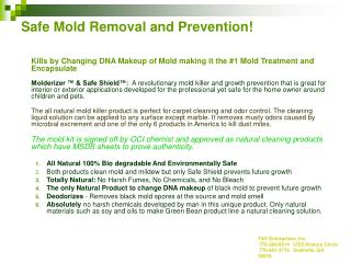 Safe Mold Removal and Prevention!