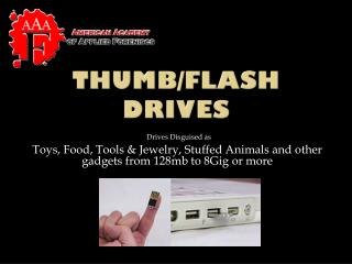 Thumb/Flash Drives