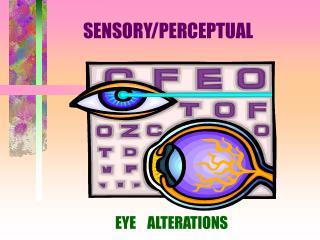 SENSORY/PERCEPTUAL