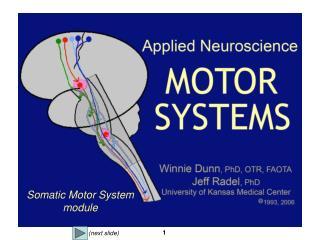Somatic Motor System module