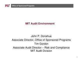 MIT Audit Environment