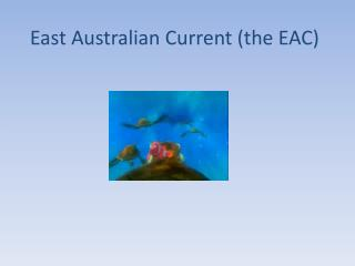 East Australian Current (the EAC)