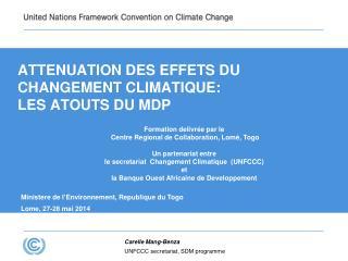 ATTENUATION DES EFFETS DU CHANGEMENT CLIMATIQUE: LES ATOUTS DU MDP