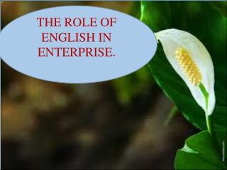 THE  ROLE OF ENGLISH IN ENTERPRISE .