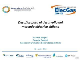 Desafíos para el desarrollo del mercado eléctrico chileno Sr. René Muga E. Gerente General