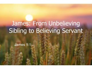 James: From Unbelieving Sibling to Believing Servant