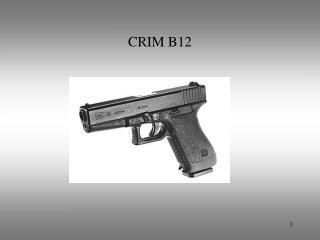 CRIM B12