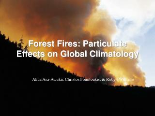 Forest Fires: Particulate Effects on Global Climatology