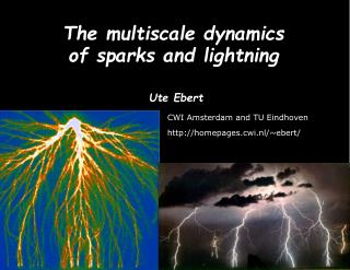 The multiscale dynamics           of sparks and lightning