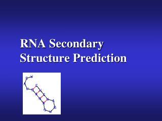 RNA Secondary Structure Prediction