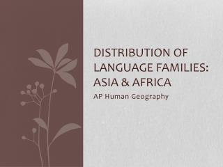 Distribution of Language Families: Asia & Africa