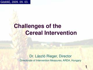 Challenges of the  Cereal Intervention