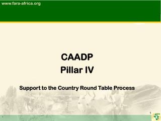 CAADP  Pillar IV Support to the Country Round Table Process
