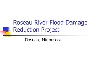 Roseau River Flood Damage Reduction Project