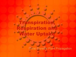 Transpiration, Respiration and Water Uptake