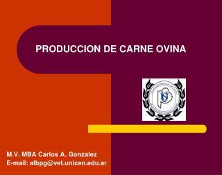 PRODUCCION DE CARNE OVINA