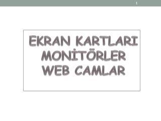 EKRAN KARTLARI MONİTÖRLER WEB CAMLAR