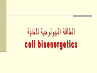 الطاقة البيولوجية للخلية cell bioenergetics