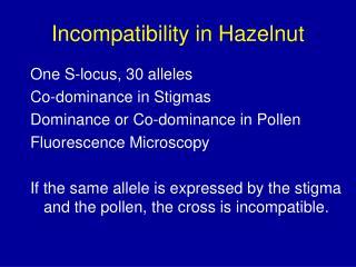 Incompatibility in Hazelnut